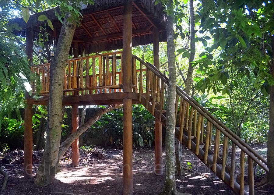 Casa 1227 – Casa na Árvore